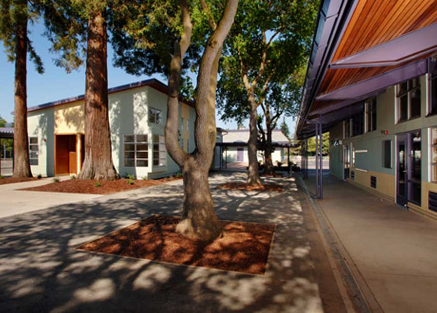 LASD-Oak ES-04
